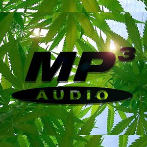 Image for 'MP3 ON WEED'