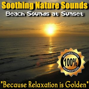 Image for 'Beach Sounds at Sunset'