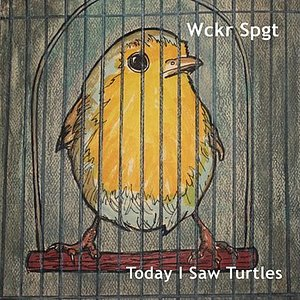 Image for 'Today I Saw Turtles'