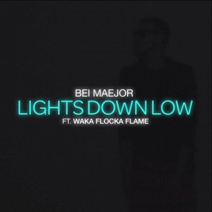 Image for 'Lights Down Low'
