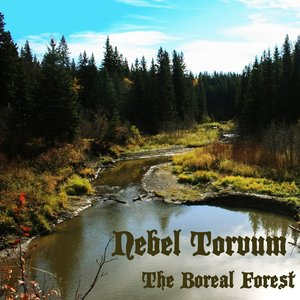 Image for 'The Boreal Forest'