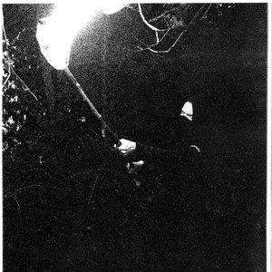 Image for 'Orodruin'