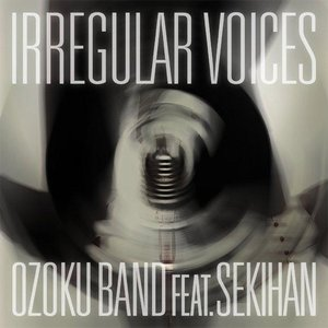 Image for 'IRREGULAR VOICES feat. Sekihan'