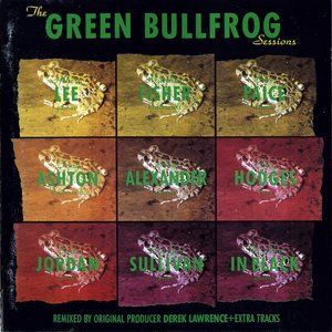 Image pour 'The Green Bullfrog sessions'