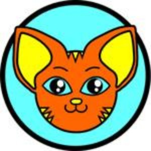 Image for 'Roricat'