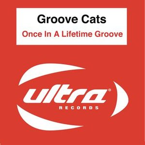 Image for 'Once in a lifetime groove'