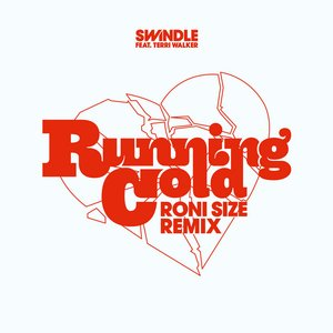 Image for 'Running Cold (Roni Size Remix)'