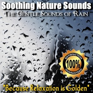 Image for 'The Gentle Sounds of Rain'