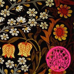 Image for 'Ja Tack Lätt'