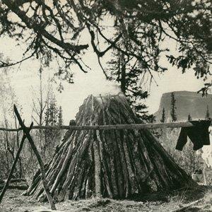 Immagine per 'Sauna (demo)'