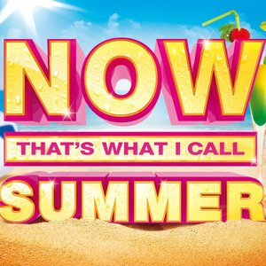 Image for 'Now That's What I Call Summer'