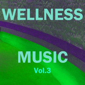 Image for 'Wellness Music, Vol. 3'
