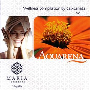 Image for 'Wellness compilation by Capitanata Vol. II'