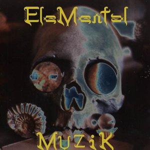 Image for 'EleMental Muzik'