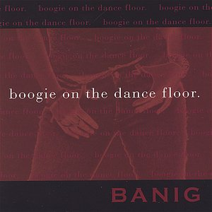 Image for 'Boogie On The Dance Floor (maxi-single)'