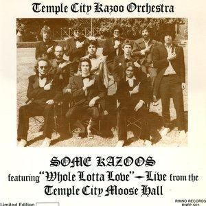 Image pour 'Some Kazoos'