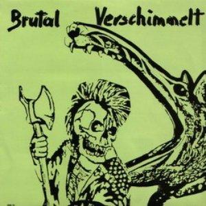 Image for 'Brutal Verschimmelt'