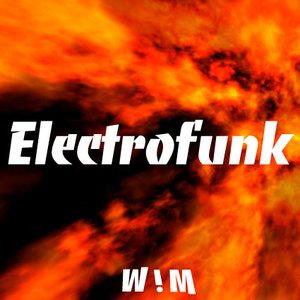 Image for 'Electro Funk'