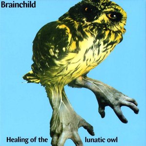 Image for 'Healing Of The Lunatic Owl'