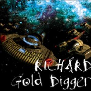 Bild für 'Richard Gold Digger - Electronic Mixes'