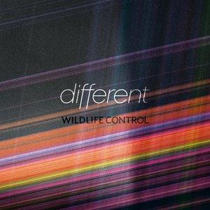 Bild für 'Different'