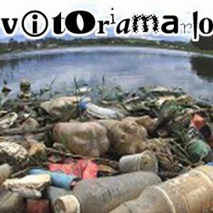 Bild för 'vitoriamario'