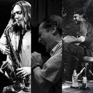 Image for 'Mike Patton, John Zorn & Dave Lombardo'