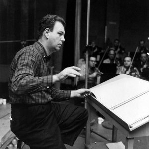 Image for 'Nelson Riddle and His Orchestra'
