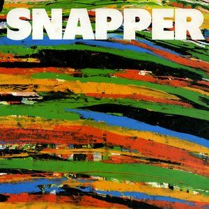 Image for 'Snapper'