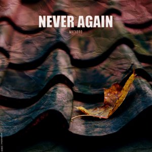 Image for 'Never Again'