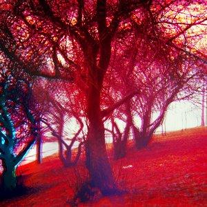Image for 'spring fever dream'