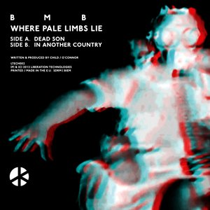Image for 'Where Pail Limbs Lie'