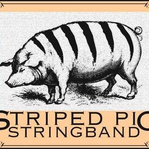 Imagen de 'Striped Pig Stringband'