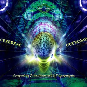 Image for 'VA - Cerebral Overload (Mental Mechanix Records)'