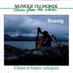 Immagine per 'Celtic Songs - Ireland, Scotland & Brittany'