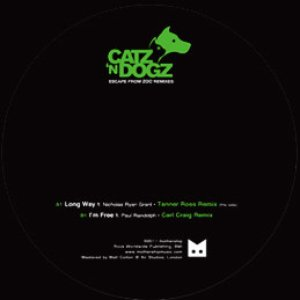 Image for 'I'm Free (Carl Craig Remix)'
