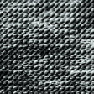Image for 'Reginald Circumstance'