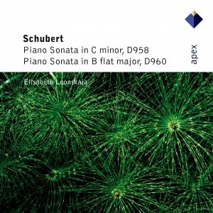 Image for 'Schubert : Piano Sonatas Nos 19 & 21'