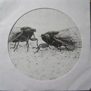 Imagen de 'EP #1'