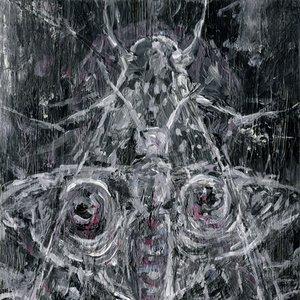 Image for 'Undine'