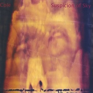 Image for 'Suspicion Of Sky'