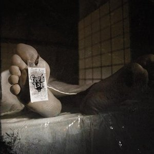 Image for 'Back Door'