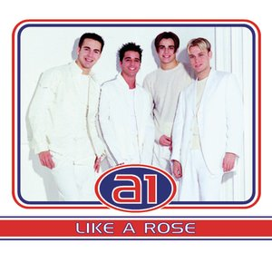 Image for 'Like a Rose'