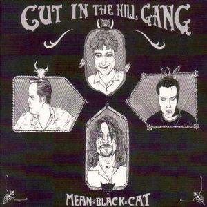 Image pour 'Mean Black Cat'