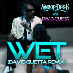 Imagen de 'Wet (Snoop Dogg vs. David Guetta) [Remix]'