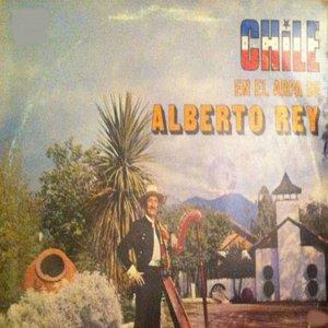 Image for 'Chile en el Arpa de Alberto Rey'