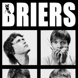 Image for 'Briers'