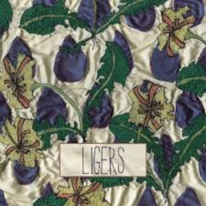 Image for 'LIGERS'
