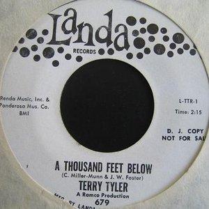 Bild für 'Terry Tyler'