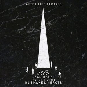Image for 'After Life Remixes'